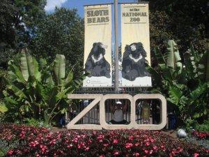 Washington DC National Zoo